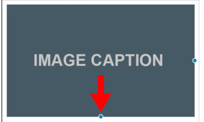 Image Caption in WordPress Example
