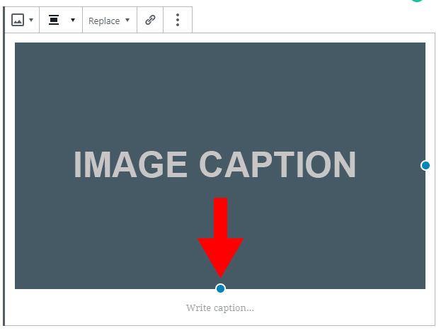 Image Caption in WordPress Example